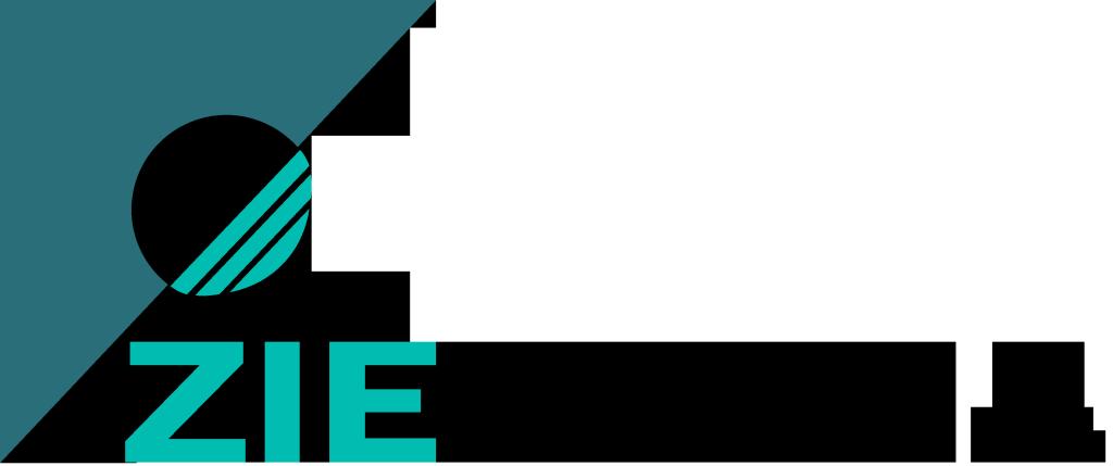 Logo Ziemedai Videoproducties